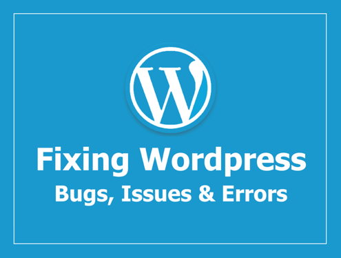I will fix any wordpress bugs/issues within 12 hours
